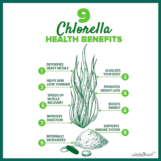 chlorella images (8)_edited.png