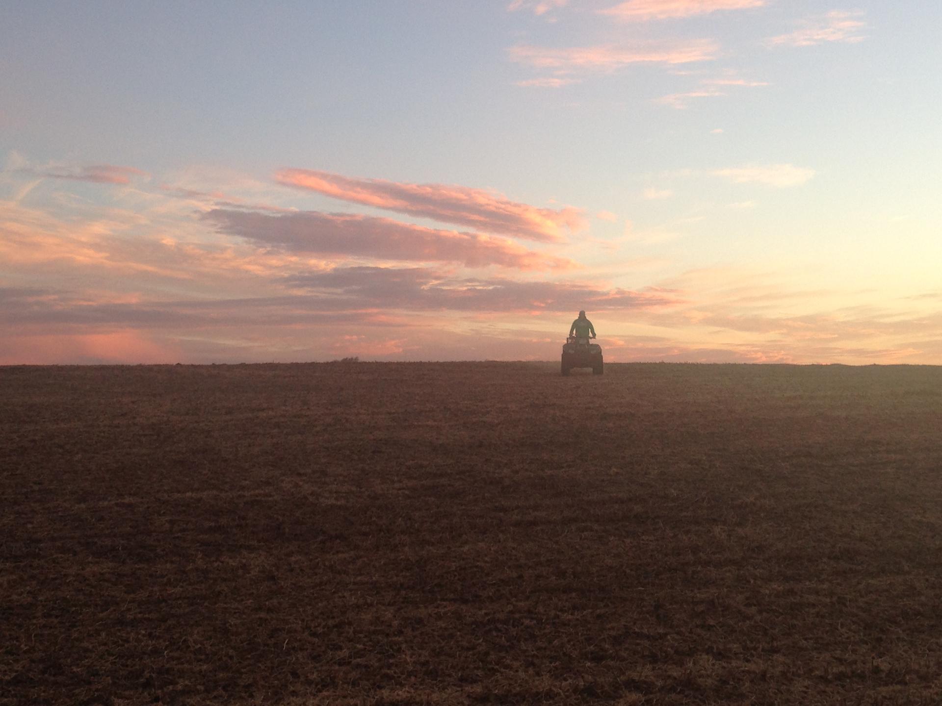 Sampling at Sunset