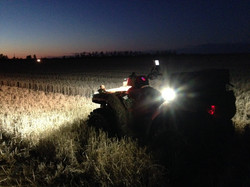 Missouri Rice Fields at Night