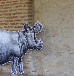 L'Hippo (3)