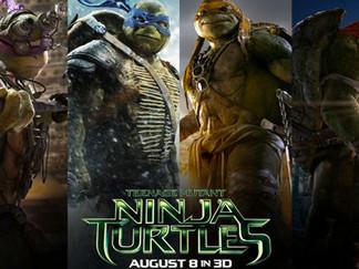 《忍者龜》:由養巴西龜說起