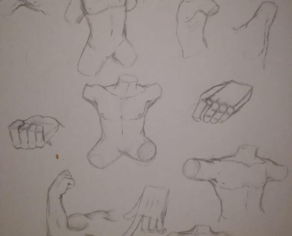 Bodyparts & Anatomy 7.jpg
