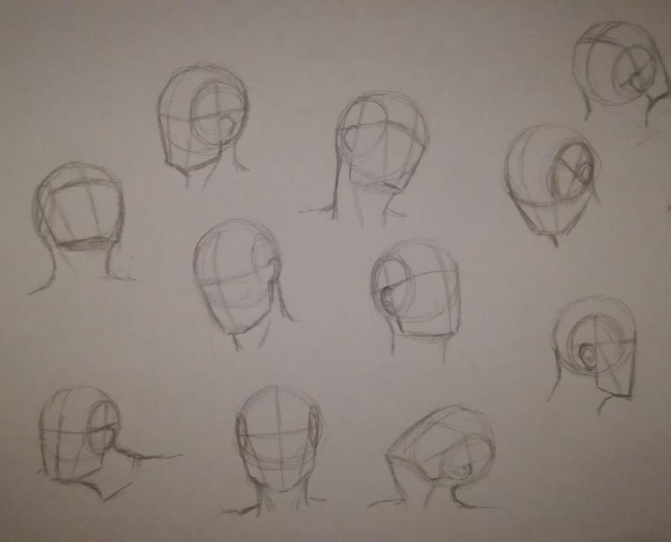 Bodyparts & Anatomy 8.jpg
