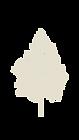 full monoline tree cream.png