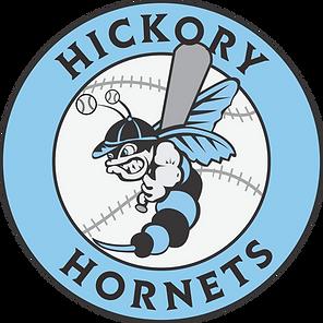 4187_hickory_hornets_logo_BJ-01.png