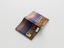 Free_Book_Mockup_8-Recovered (1)