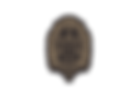 Insignia PNG Gold Black.png