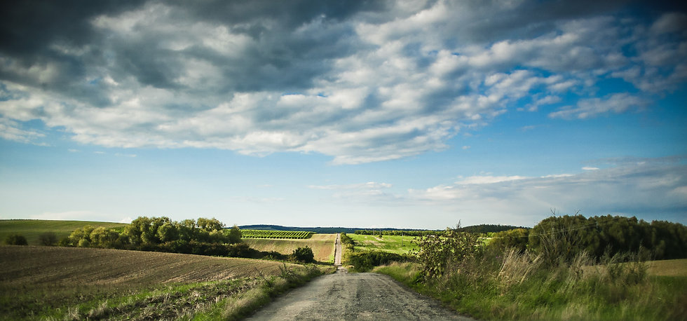 lonely-road-in-the-middle-of-fields-picj