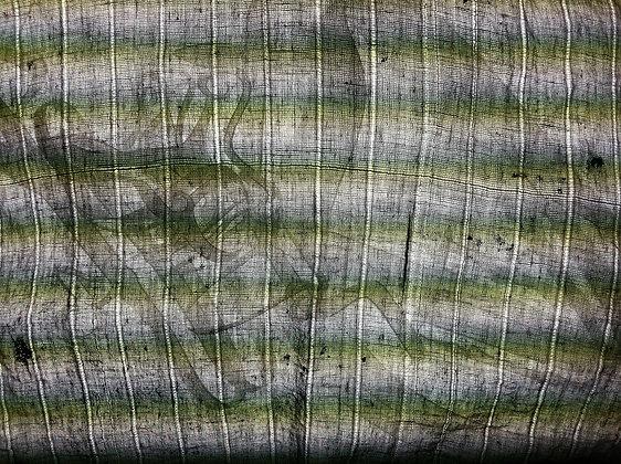 Cloth & Cut Paper on Lightbox IV