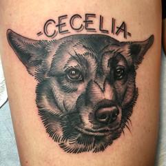 Custom pet portrait tattoo