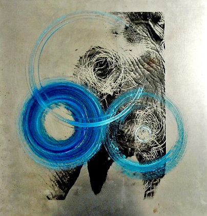 Elephant with Blue Circle