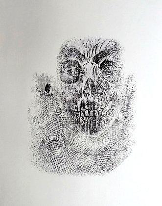 Skull with Net