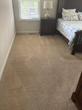 carpet%201_edited.jpg