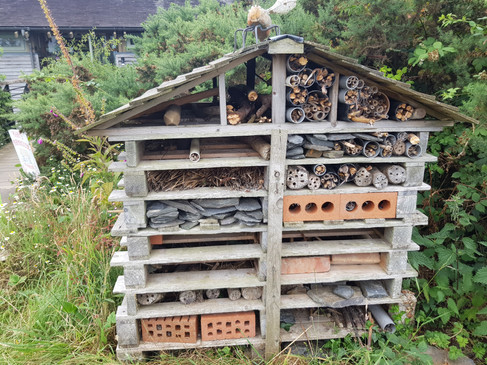 Insect house at the Wildlife Centre