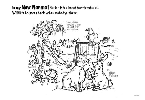 Toots and the New Normal park