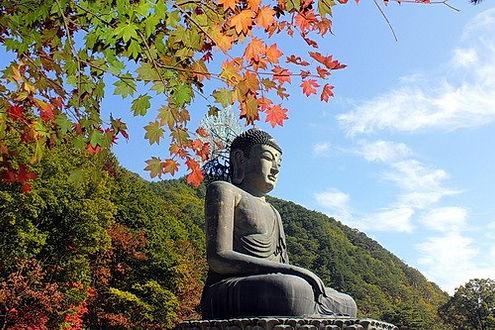 דרום קוריאה- תמונה מס 7.jpg