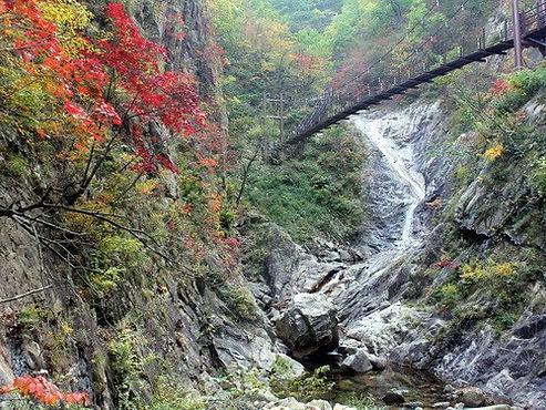 דרום קוריאה- תמונה מס 8.jpg