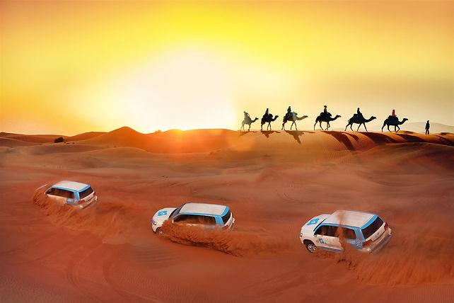 Dune-Bashing.jpg