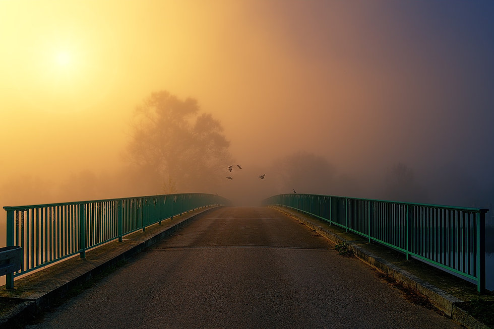bridge-4281136_1920.jpg