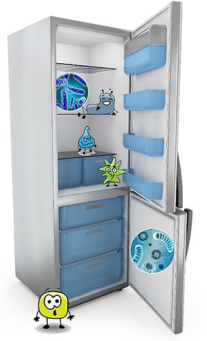 Refigerator with germs