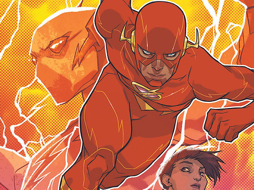 The Flash 12 Issue Subscription