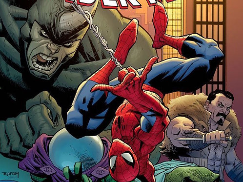 Amazing Spider-Man 12 Issue Subscription