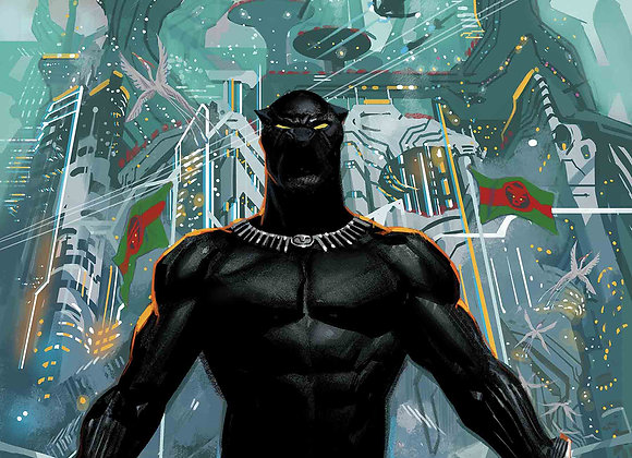 Black Panther 6 Issue Subscription