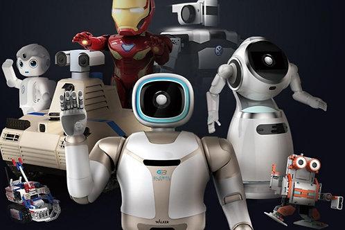 Robotics 4 Kidz Festival