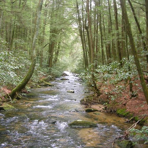02-Stover-Creek.jpeg