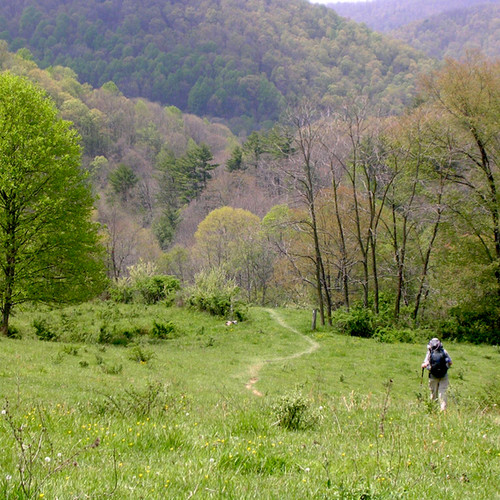 17-Trail-in-Virginia_EDIT.jpeg