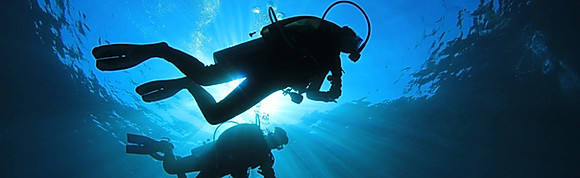Daily Dive Tours