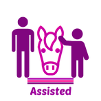 Etsy Shop Icon (8).png
