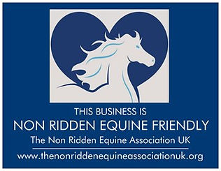 NON RIDDEN FRIENDLY BUSINESS.jpg