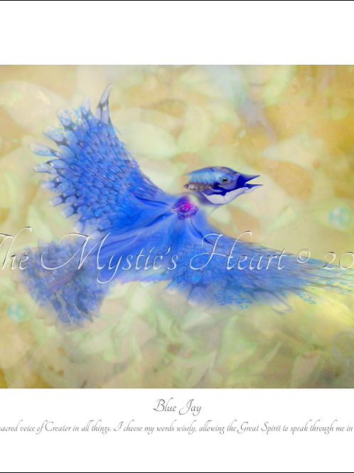 Blue Jay 16x12 Unframed Giclée Print