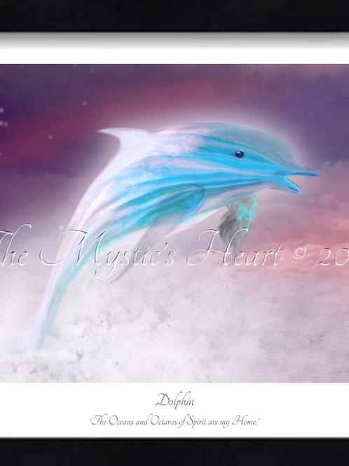 Dolphin 16x12 Framed Giclée Print