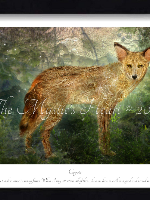 Coyote 16x12 Framed Giclée Print