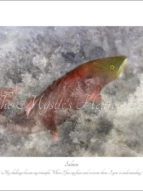Salmon 16x12 Unframed Giclée Print