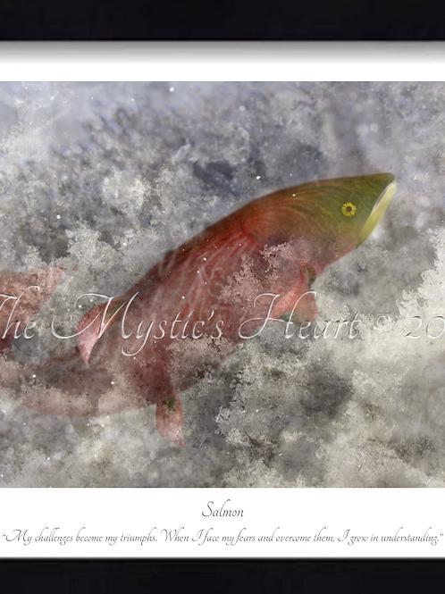 Salmon 16x12 Framed Giclée Print