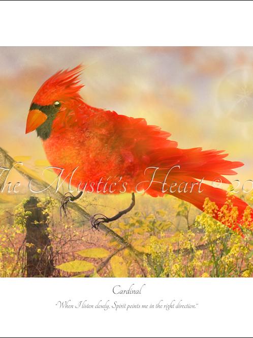 Cardinal 16x12 Unframed Giclée Print