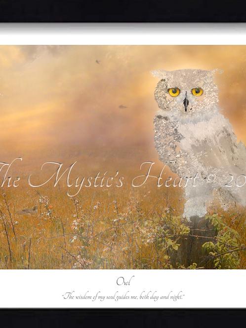Owl 16x12 Framed Giclée Print