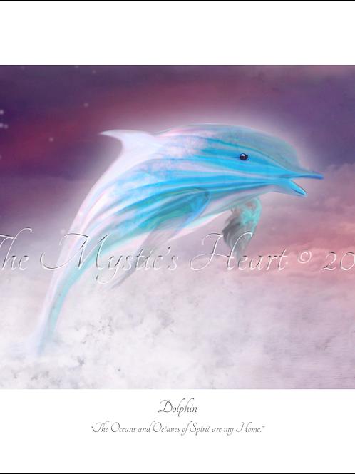 Dolphin 16x12 Unframed Giclée Print