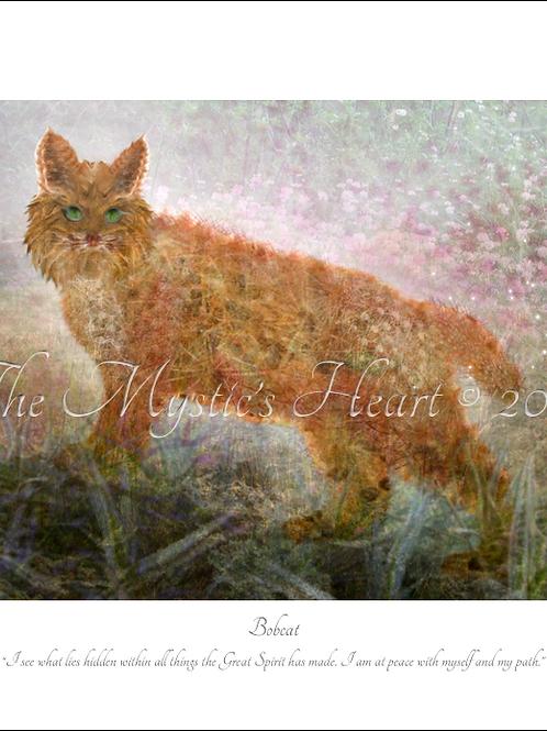 Bobcat 16x12 Unframed Giclée Print