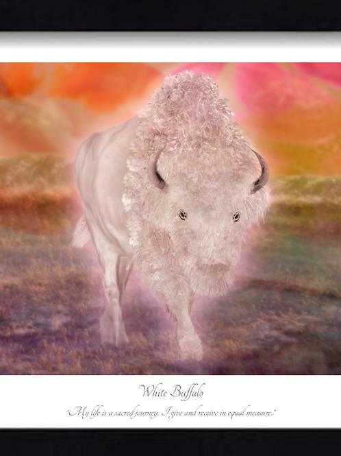 White Buffalo 16x12 Framed Giclée Print