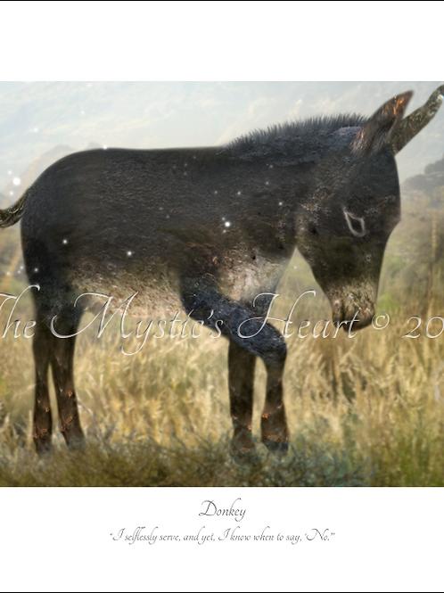 Donkey 16x12 Unframed Giclée Print