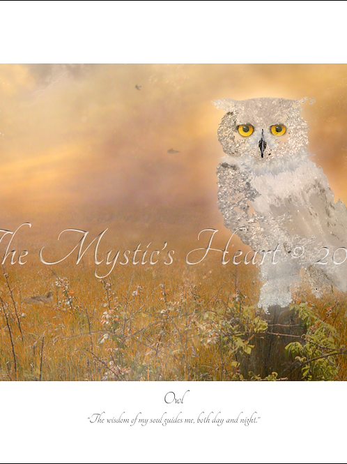 Owl 16x12 Unframed Giclée Print