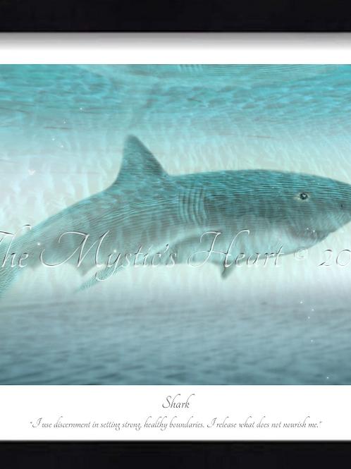 Shark 16x12 Framed Giclée Print
