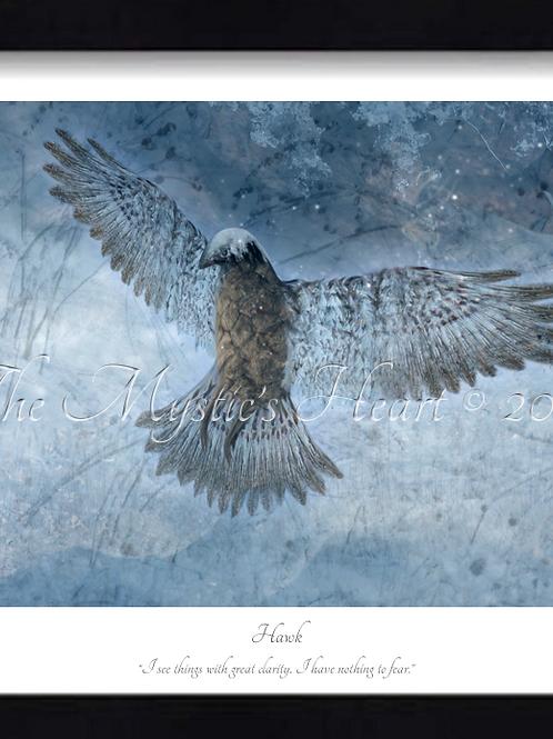Hawk 16x12 Framed Giclée Print