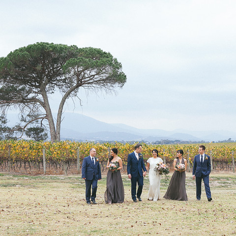 Vineyard bridal party