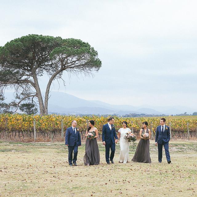 Vineyard bridal party