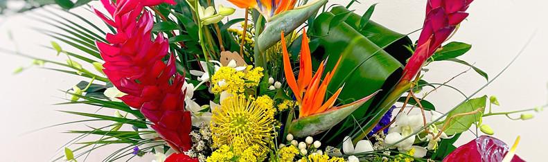 Large Tropicals 210424 DANS GALLERY.jpg